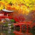京都で人気の紅葉スポットランキング10位を調査!ココは行けぇ~!!