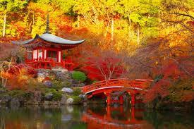 2015年 京都 人気の紅葉スポットランキング10位を調査!