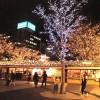 横浜イルミネーション点灯式はいつ?どこがおススメ?