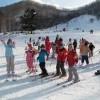 スキーするなら札幌市内限定ですぐ行けるスキー場情報だけ選んでみた!