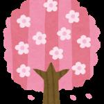 桜の名所は大学のキャンパスに有り?桜が人気の大学を紹介です!