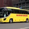 はとバスとは?はとバスの発祥と東京観光で人気が高い理由は?プランは?