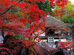 出典:http://www.ogotoonsen.com/spot/spot_ishiyama