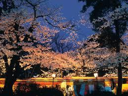 出典:http://www.rurubu.com/season/spring/sakura/detail.aspx?SozaiNo=170001
