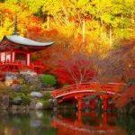 京都の紅葉絶対拝観すべき名所は?隠れた寺院を厳選!此処は是非観て!