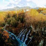 GoToトラベル北海道で超お得な旭岳ロープウェイ&美瑛の青い旅!